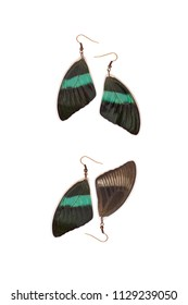 Beautiful earrings made of the forewings of a green swallowtail (Papilio blumei)