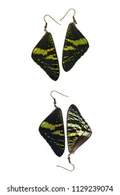 Beautiful earrings made of the forewings of a madagascan sunset moth (Urania ripheus)