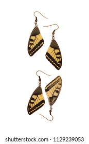 Beautiful earrings made of the forewings of a old world swallowtail (Papilio machaon)