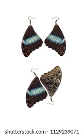 Beautiful earrings made of the forewings of a Peleides blue morpho (Morpho peleides)