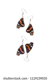 Beautiful earrings made of the forewings of a red admiral (Vanessa atalanta)