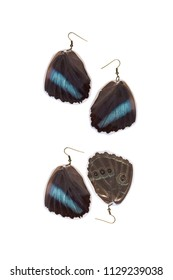 Beautiful earrings made of the hindwings of a blue-banded morpho (Morpho achilles)