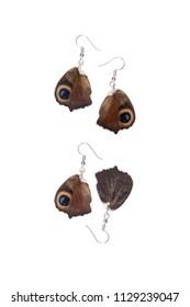 Beautiful earrings made of the hindwings of a European peacock (Aglais io)