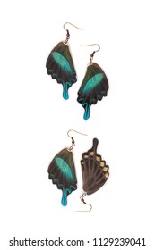 Beautiful earrings made of the hindwings of a green swallowtail (Papilio blumei)