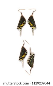 Beautiful earrings made of the hindwings of a green-banded urania (Urania leilus)