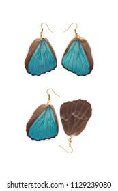 Beautiful earrings made of the hindwings of a menelaus blue morpho (Morpho menelaus)