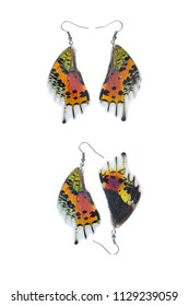 Beautiful earrings made of the wings of madagascan sunset moth (Urania ripheus)