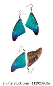 Beautiful earrings made of the wings of a rhetenor blue morpho (Morpho rhetenor)