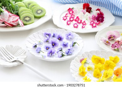 Beautiful edible flowers on plates. Ingredients for spring salad or sweets cooking.