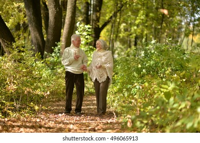 Beautiful elderly couple walking in the autumn park