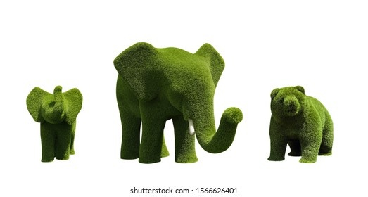 Beautiful elephant and bear shaped topiaries isolated on white. Landscape gardening