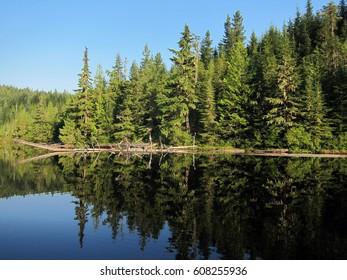 Beautiful Elk Lake in the woods of British Columbia, Canada
