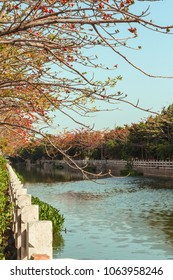 Beautiful embankment in a small town in China