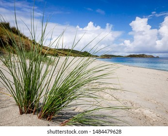 The beautiful, empty beach at Great Bay on the island of St Martin's, Isles of Scilly. Framed through a spiky tuft of Marram Grass. August 2019.