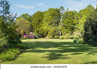 Beautiful English Country Garden in the Summer