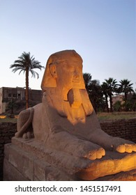 A beautiful and enigmatic Sphinx style statue in front of the Luxor Temple, in Luxor, Egypt.