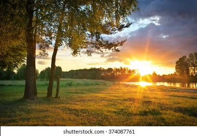 Beautiful evening sunny landscape with trees, grass and river