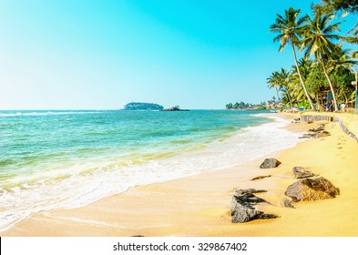 Beautiful exotic beach with golden sand and tall palm trees against the azure sea and blue sky, Caribbean Islands