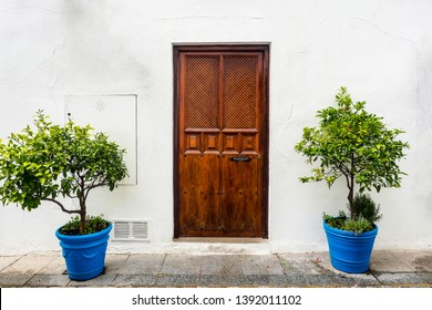 The beautiful exterior facade with a wooden door and blue plant pots