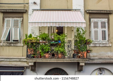 beautiful exterior symmetry frame concept of balcony in common concrete apartment building with flowers flower bed and green plants and white windows shutters