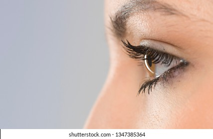 beautiful eyes closeup macro shot