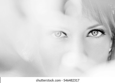 beautiful eyes of a young woman