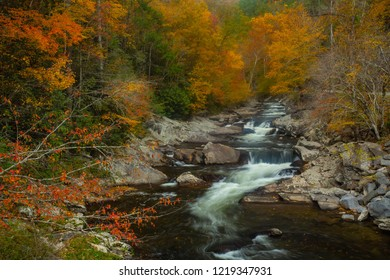 Beautiful Fall colors line The LIttle River in Smoky Mountains National Park Tennessee
