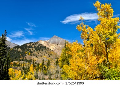 Beautiful fall colors in the San Juan Skyway, Uncompahgre National Forest in Colorado.