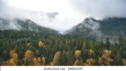 Beautiful Fall foliage in the Kootenay mountains in British Columbia
