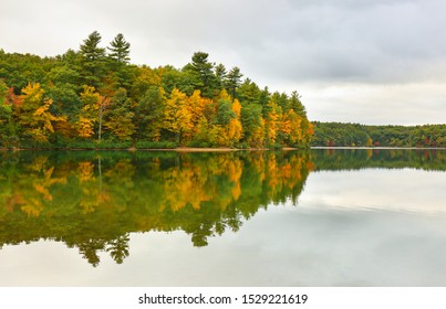 Beautiful fall foliage at Walden Pond, Concord Massachusetts USA. Walden Pond is a lake in Concord, formed by retreating glaciers 10,000–12,000 years ago.
