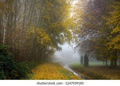Beautiful fall morning in the park.