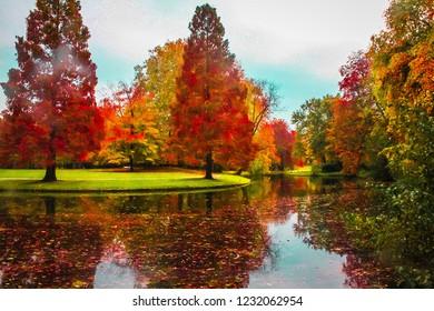Beautiful fall in Rotterdam, Netherlands