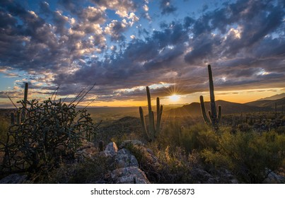 A beautiful fall sunset in the Sonoran Desert, near Tucson Arizona.