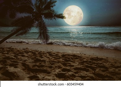 Beautiful fantasy tropical beach with star and full moon in night skies (seascape) - Retro style artwork with vintage color tone