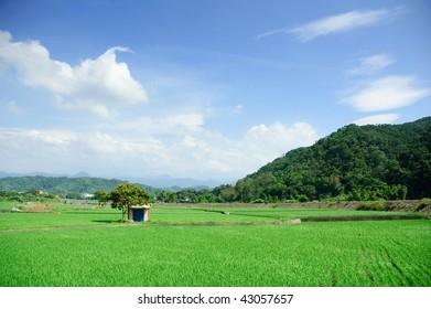 It is beautiful farm in taiwan