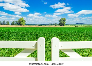 Beautiful farmland behind a pristine white picket fence gate on a sunny day.