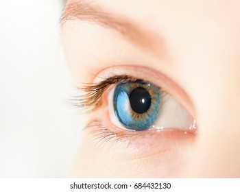 Beautiful female eye of blue color on a white background macro. Look of a young woman close-up.