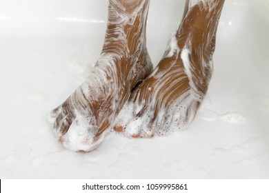 Beautiful female feet covered in foam and suds in the bathroom. Close-up of a woman's feet Selective focus.  Closeup of wet legs in the bathroom.
