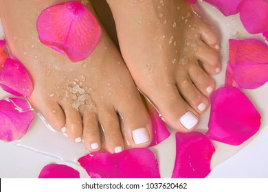 beautiful female feet with a beautiful pedicure in a bath with salt and rose petals