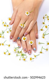 Beautiful female hands with art manicure and chamomile on white background