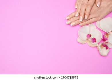 Beautiful Female Hands with French manicure over pink background