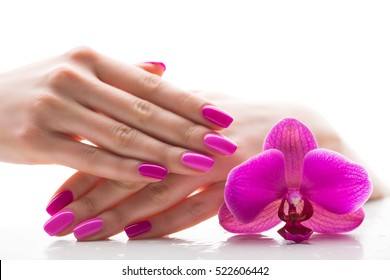 beautiful female hands with pink nail polish on a white background, spa treatments