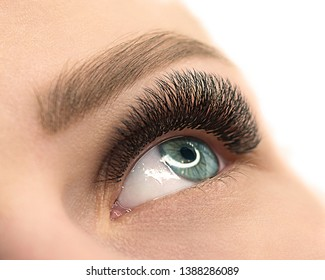 Beautiful female open blue eye with eyelash extension. Close up, selective focus, isolated on white. Beauty service and products, fashion, make up, cosmetic, medicine, laser surgery, eyesight, vision