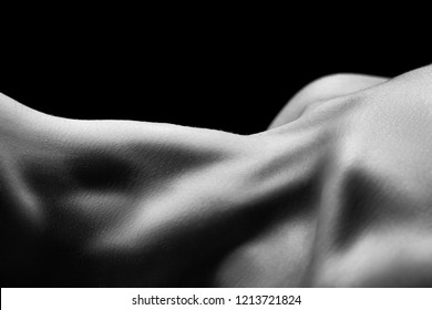 beautiful female slim neck with clavicle on black background, monochrome