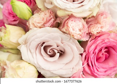 Beautiful feminine floral flat lay fresh rose background