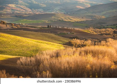Beautiful fields and forests in the landscape of Tuscany