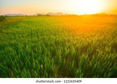 Beautiful fields and sunsets.