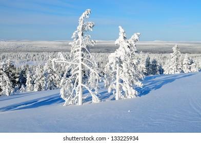 Beautiful finnish Lapland landscape, Akaslompolo, Finland