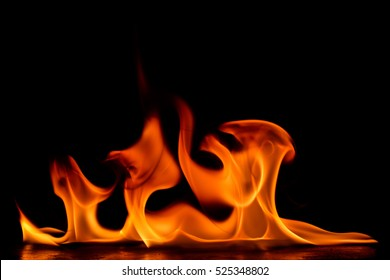 Beautiful fire flames on a black background.