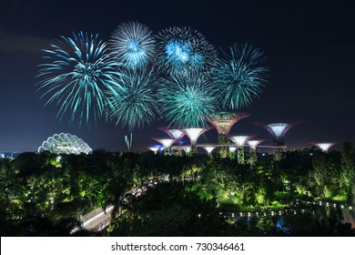 beautiful firework over Gardens by the bay with light at night, Singapore
